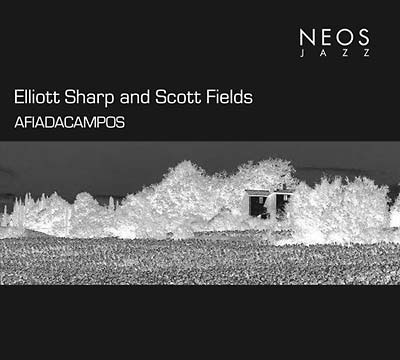 ELLIOTT SHARP & SCOTT FIELDS : Afiadacampos